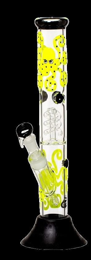 bongo octopus